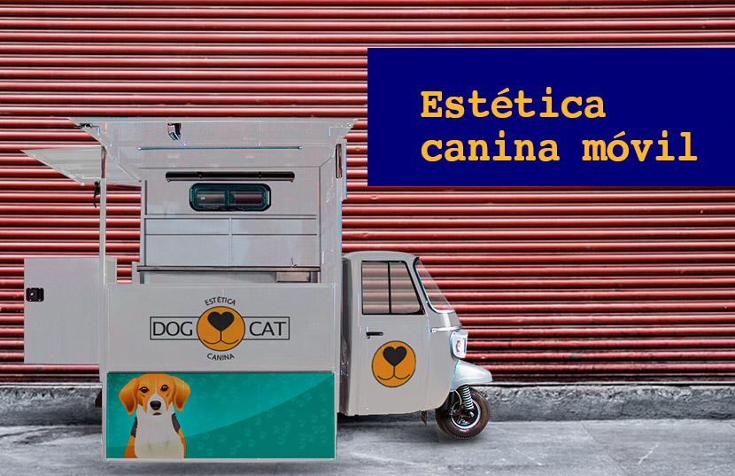 iniciar estética canina móvil